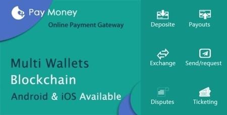 PayMoney Online Payment Gateway